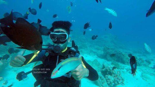 Scuba diving ở Boracay rất đẹp nhé. Nhất định phải thử.- Kinh nghiệm du lịch Boracay của Đức Đen
