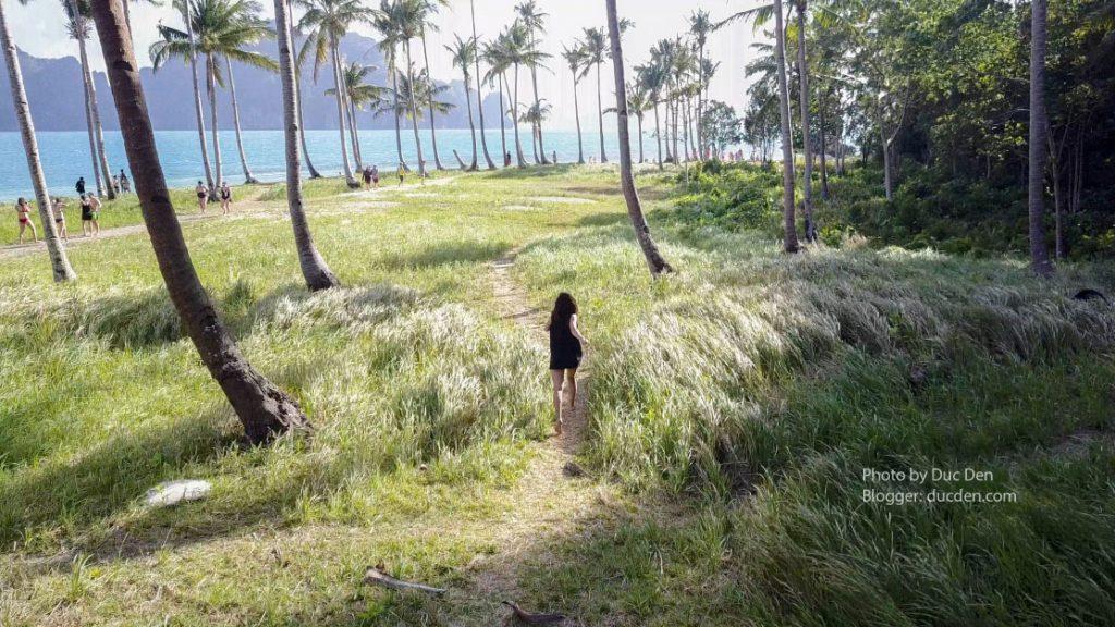 Cánh đồng cỏ trên đảo Pinagbuytan đây | Du lịch El Nido