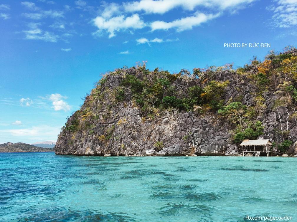 Coral Garden: Điểm snorkeling ngắm san hô siêu đẹp - Du lịch Coron by Đức Đen