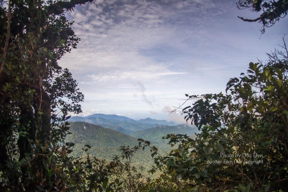 Leo lên đỉnh khá mệt, rừng rậm nên cũng hiếm có đoạn nào đứng view ra xa như này