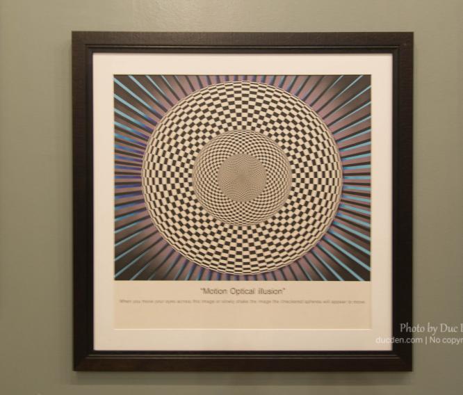 Hoa mắt vl | Bảo tàng nghệ thuật 3D Langkawi