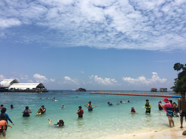 Pulau Payar Marine Park nổi tiếng là lặn, bơi cùng cá mập con :3