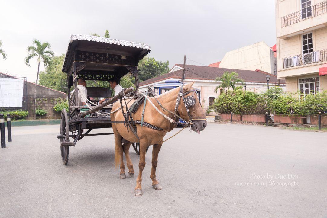 Cẩn thận mấy chú xe ngựa này lừa tiền nhé!!!