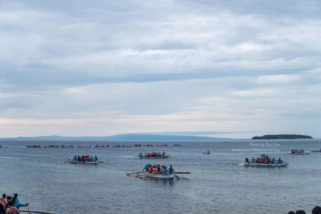 Dàn thuyền đang xếp hàng xem Whale Shark
