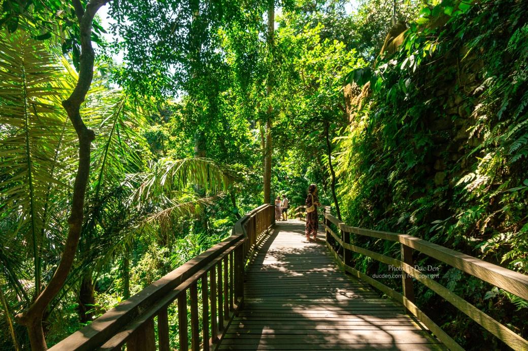 Lối đi xuống một cây cầu đá rất đẹp