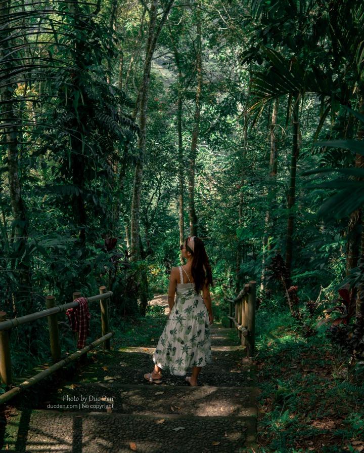 Đường đi xuống thác Nungnung hòa vào thiên nhiên rất đẹp - Khám phá Bali